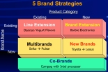 Five Basic Brand Strategies