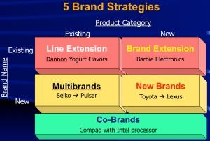 Five Basic Brand Strategies