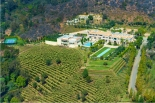 Beverly Hills Mansion with Vineyards