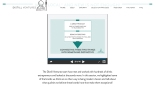 Screenshot of website of Distill Ventures by DIAGEO