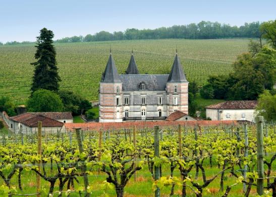Frapin, Château de Fontpinot