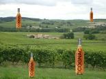 Cognac Landscape